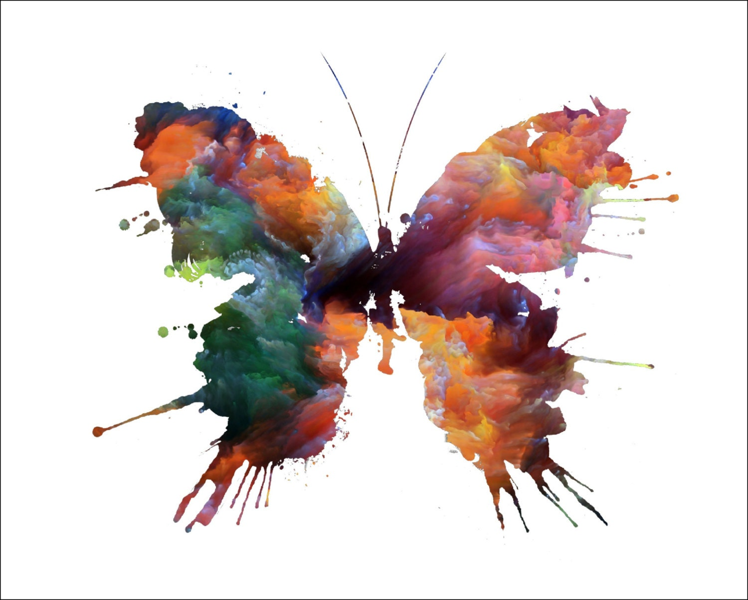 Butterfly archival watercolor art print 5 x by for Art sites like etsy