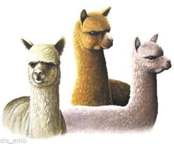 how to fix alpaca quilt