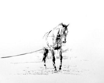 """Piece #W041 """"Horse"""""""