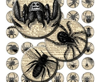 Halloween Vintage Spiders & Bugs Creepy Crawly Digital Images Collage Sheet 1 inch Circles INSTANT Download BC43