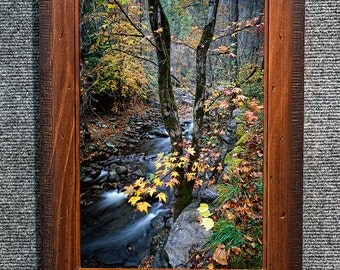 Framed Smoky Mountains Pictures Autumn Creek Fine Art Photo from William Britten