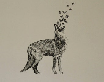 Coyote and Butterflies original drawing