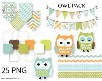 Owl clipart, owl digital clipart, owl bunting, owl banner, digital frames, owls, clip art, scrapbook supplies - BR 313