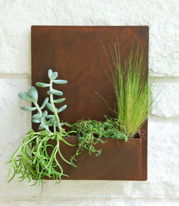 12 x 16 modern metal succulent wall planter and by urbanmettle for Indoor succulent wall