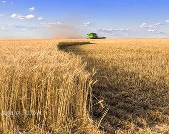 "Title: ""Kansas Wheat Harvest""  Landscape Photography - Fine Art Print"