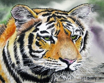 Tiggy- A Tiger watercolor print of an Original piece of Artwork.