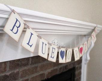 Gender Reveal Banner Blue or Pink Banner Baby Banner Baby Shower Banner Baby Shower Decor