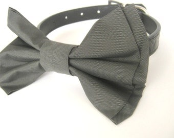 Bow tie collar Dog bow tie collar Collar with bow tie Collar bow tie set Dog collar Wedding collar
