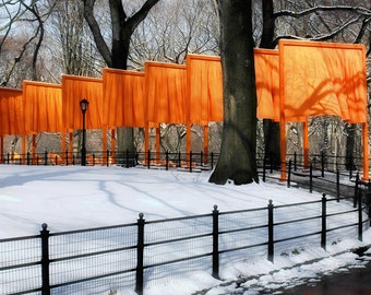 Gates by Christo in Central Park, NYC, with Snow and Iron Wrought Fence