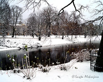 In The Park- Fine Art Photography - Digital photography download, instant download, Printable Art, winter photography, Wall decor