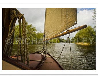 Sailing boats on the Norfolk Broads