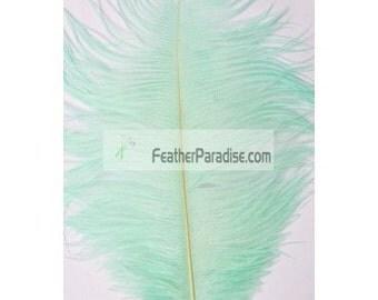 White/Black/Lavender/Mint Green/ Turquoise/Fuchsia/Blue  Ostrich Feather 12  Pieces Ostrich wedding Centerpieces