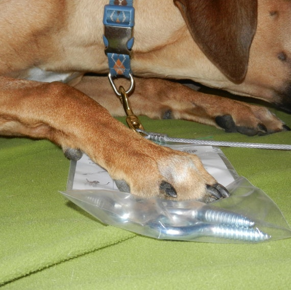 Dog Training Tether/Tie Out. Chew Proof. Indoor/Outdoor