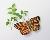 Butterfly- entomology sculpture