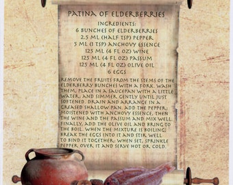 Ancient Roman Recipe Patina of Elderberries Apicius A5 canvas Photo Print Cooking