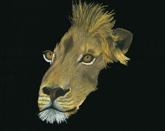 Print of an original pastel drawing of a lion
