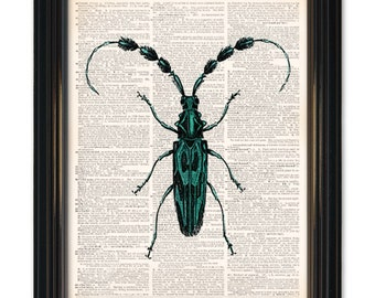 Beetle insect dictionary art print. Awesome insect printed on vintage dictionary paper 8x10 inches. Buy any 3 prints get 1 free!
