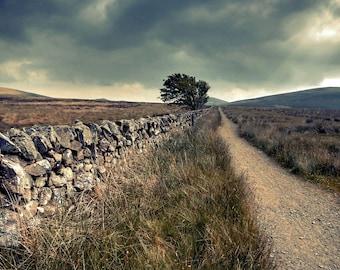 Wall With Road, original fine art photography, print, landscape, grass, field, scotland, hill, woods, pentland, edinburgh, sky, dark, rain
