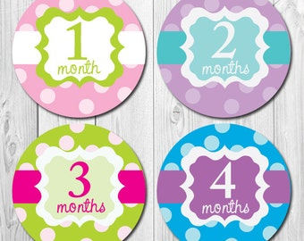 Girl Monthly Stickers, Baby Photo Prop Months 1-12, Girl Milestone First Year Stickers, Bodysuit, Tummy Stickers