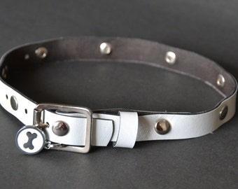 Pet Collar: White Studded Timeless Fashion Adjustable Pet Collar ( DCI009s )