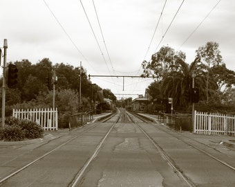 Photograph - Metallic Print - Tracks