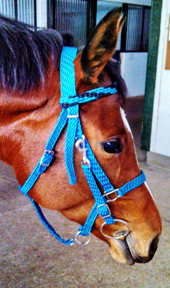 Custom braided paracord halter bridle combo by for Paracord horse bridle