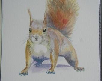 Original Water color painting, Squirrel 5x7 in, brown, yellow, cute animal, painging