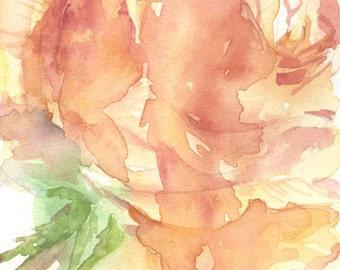 Apricot Rose Painting Original Watercolor, Peach Roses Art, Rose Decor