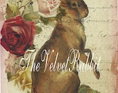 Cards.Rabbit and antique roses French script Postcards. Hand glittered.Hand cut.Collage.Beautiful