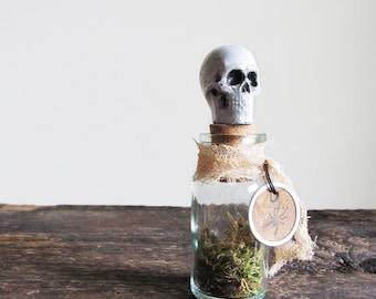 Skull Head Spice Jar