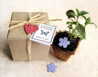 25 Seed Paper Wedding Favors - Plantable Pots and Seed Paper Hearts - Flower Seed Kit - Personalized