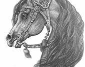 Arabian Horse Print Egyptian Fine Art ACEO Pencil Illustration
