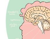 custom brain portrait art print