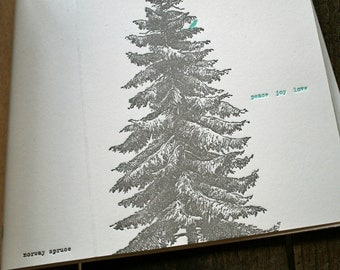 norway spruce letterpress holiday card