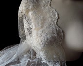 Ivory Lace Embroidered on Point d'Esprit for Bridal Gowns a la BHLDN, Downton Abbey,  Shrugs, Shawls