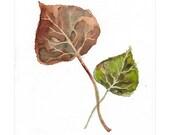 Leaves - Original Watercolor Painting - Orange Green Brown Art - ooak, one of a kind 7x9 in