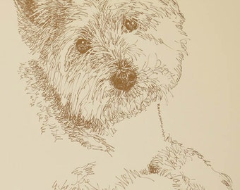 West Highland White Terrier Westie dog art portrait drawing from words. Dog's name added into art FREE. Signed Kline 11X17 Lithograph #61