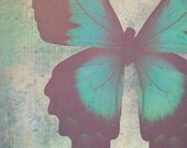 Painted Butterfly - Turquoise Abstract Nature Home Decor Photograph