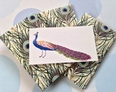 Gift Enclosure Card, Mini Cards and Envelopes, Peacock Card, Set of 10