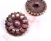 Copper Buttons, Metal Buttons, Brass Sunflower Buttons, 17mm Round, 2mm Shank Button, Lead Free, Lot Size 2 or 5, #1173