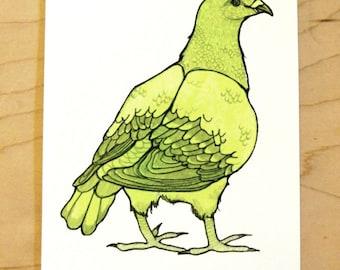 Green Pigeon- Mini Archival Print
