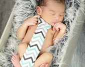 Baby Boy Tie Photo Prop Birthday Cake Smash Neck Tie First Birthday Sizes Newborn-2T Light Blue Light Dark Gray Chevron Print on White