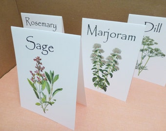 Herb Table Cards, Herb Table Numbers, Herb Table Tents, Herb Wedding, Herb Theme, Rosemary, Sage, Thyme, Spices, Marjoram