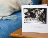 Talk to the Paw! Art Card, Cat Greeting card, Animal photography. Tabby cat sleeping, Do Not Disturb!.