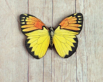 Yellow Orange Tip Butterfly Brooch