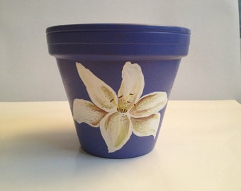 White Lily on Purple Terracotta Pot
