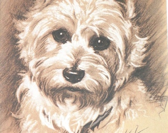 WEST HIGHLAND TERRIER Westie Vintage mounted 1939 Lucy Dawson Mac dog plate print Unique Christmas birthday gift
