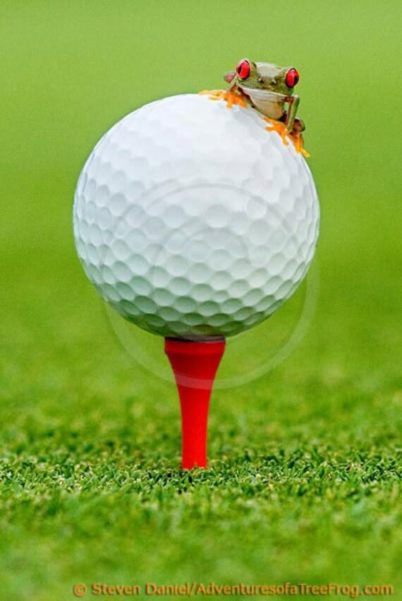Golf Print Golf Ball Golfing Baby Frog 16x24 Wall by FrogFun