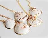 Seashell Necklace in white & brown