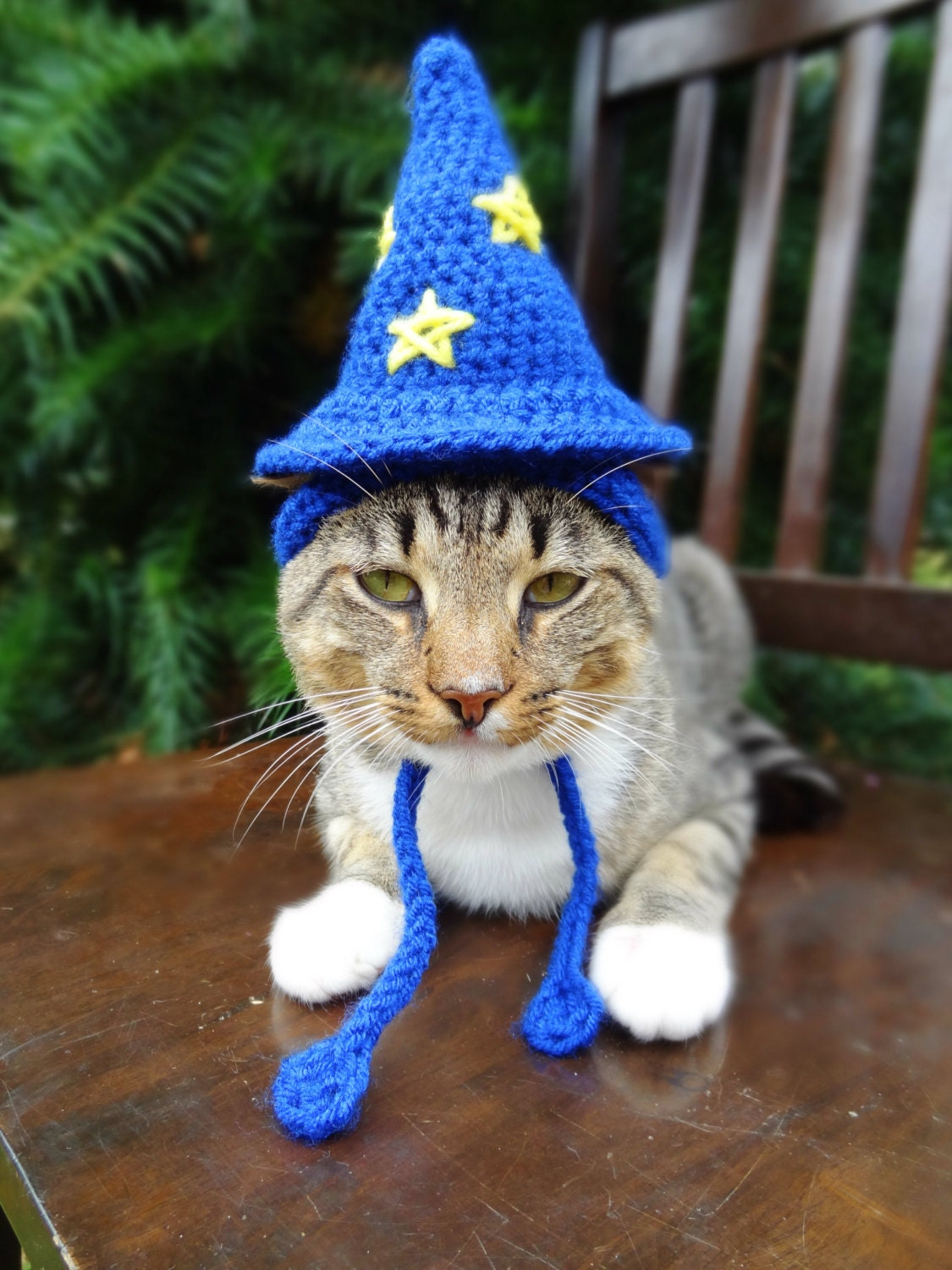 Wizard Cat Hat Wizard Cat Costume Wizard Hat for Cats